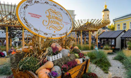 Добрые дела на фестивале «Золотая осень»